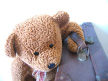 Suitcase & Teddy
