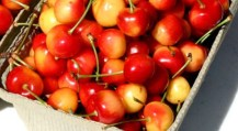 original_bing-cherries--1-