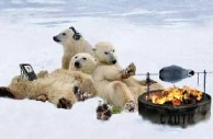 polar_bear_fire