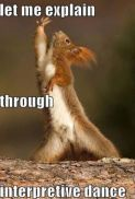 squirrel dancing